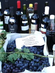 Hrozno a víno z Erdevíka
