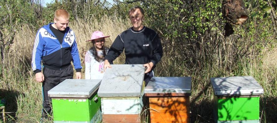 Včelárstvo ako rodinný biznis – prečo nie