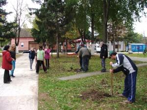 Hložianski ekológovia aj 23. novembra vysádzali stromy v parku pri Dome kultúry