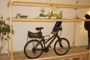 Novodobý bicykel Stevana Kojića (foto: O. Filip)
