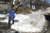 Na vojvodinských cestách a dedinách