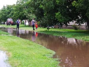 Vrece v rúre pod cestou pred tromi rokmi úplne zastavilo vodu; tohto roku voda nehatene odtekala