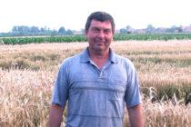 Terajšia cena pšenice je nanič!