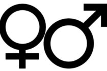 Rodová rovnosť v slovenskom národnostnom spoločenstve očami Jany Zabunov