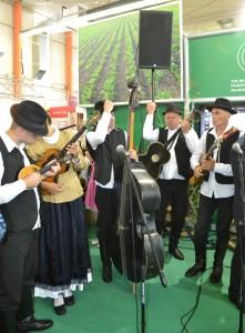 V Gornjej Radgoni bolo v ten pondelok počuť i vojvodinskú hudbu