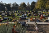 B. Petrovec: Cintorín – najbohatšia štvrť v osade