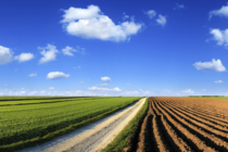AKTUÁLNE: Uťahovaniu opaskov sa nevyhne ani agrár