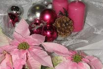 EDITORIÁL: Ružové Vianoce
