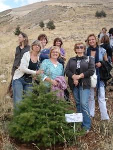 Slovenky pri výsadbe cédrov v akcii Za zelený Libanon