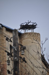 Jediný komín v Petrovci, kde sídlili bociany, vlani zbúrali