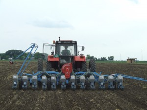 Po sejbe do dobre skyprenej pôdy a zavlažovaní na výmerách PD Poľokoop sa čoskoro objavia rady sóje