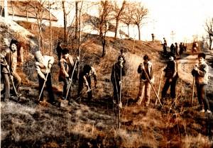 V sedemdesiatych rokoch 20. storočia žiaci zalesňovali padinskú dolinu…