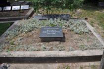 Vynovili náhrobný kameň Zuzky Medveďovej