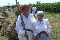 Bogat program na žetvenim svečanostima u Vojlovici