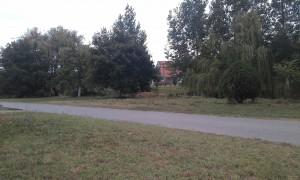 Aj poza trhovisko stred osady vedľa Begeja je primerane upravený (Foto: J. Čiep)