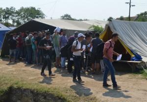Väčšina utečencov prišlo zo Sýrie