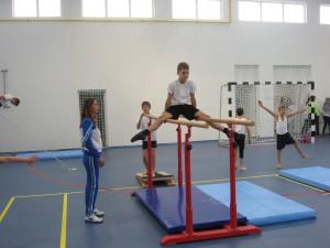 Na svoje prišli aj gymnasti, ktorí aj doteraz zaznamenávali pozoruhodné vsledky na súťaženiach