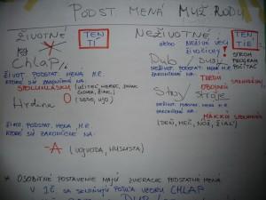 Ako sa učí slovenčina na jednom z kurzov