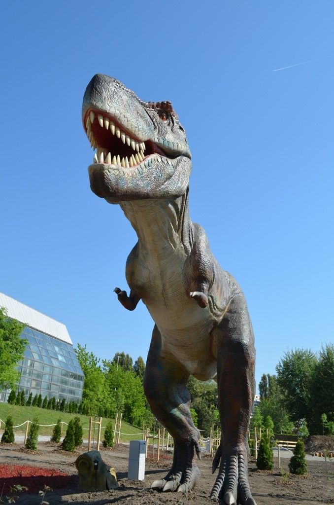 Tiranosaurus - 15 m dlhý, 6 m vysoký