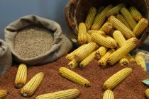 Vyššia cena sóje a kukurice
