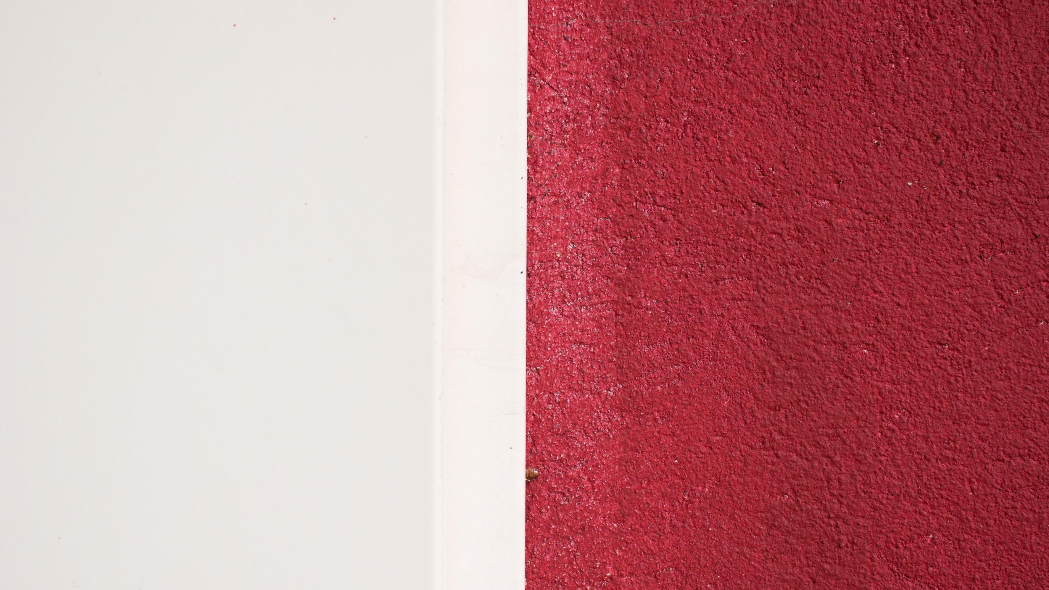 Granice ne postoje? (Foto: www.unsplash.com)