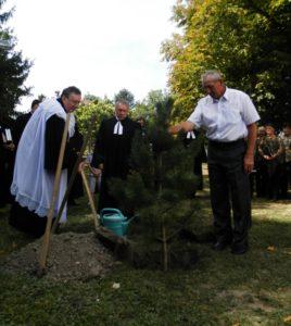 Strom reformácie zasadili pred ev. kostolom