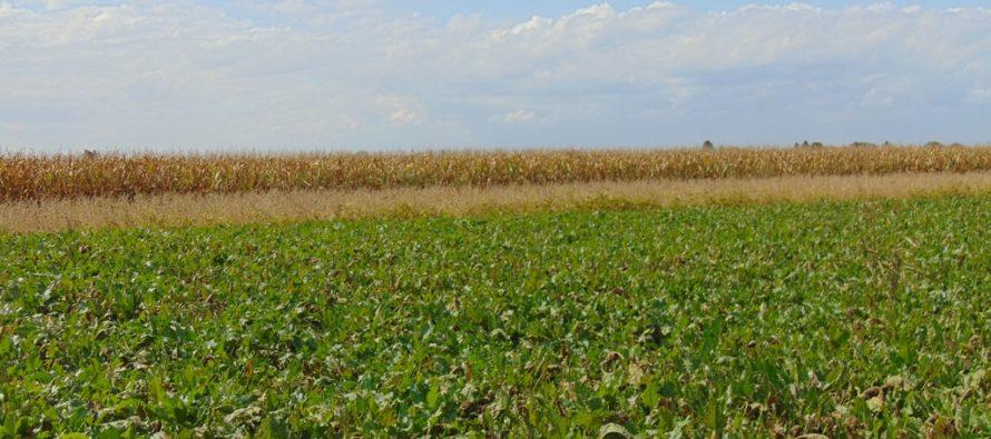 Bude viac financií pre agrosektor?