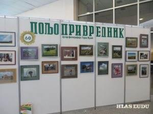 K výročiu Poljoprivrednika výstavu mal Goran Mulić