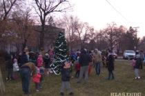 Aj v Maglići ozdobili vianočný stromček