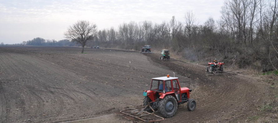 Akcia rovnania poľných ciest v Báčskom Petrovci
