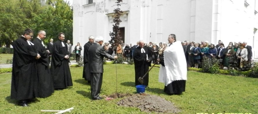 Oslavy v SEAVC v Kovačici
