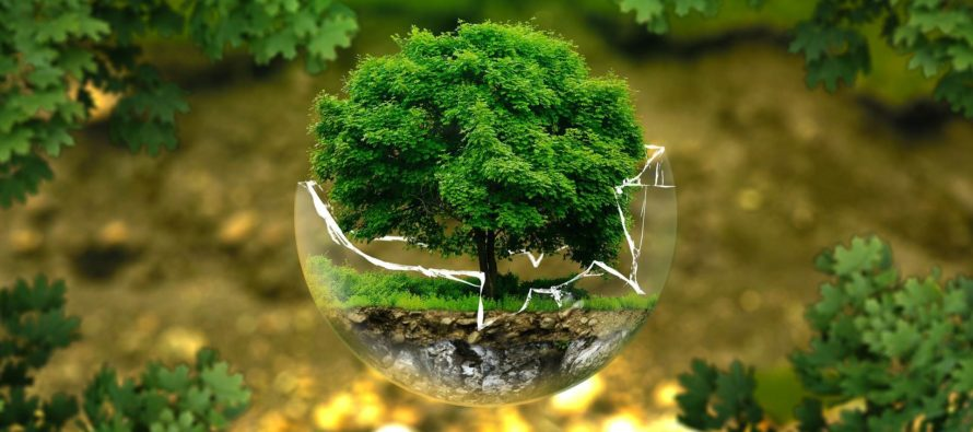 Jedna príroda, jedno zdravie