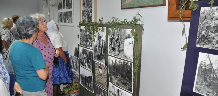 Návrat ku chmeliarskym tradíciám