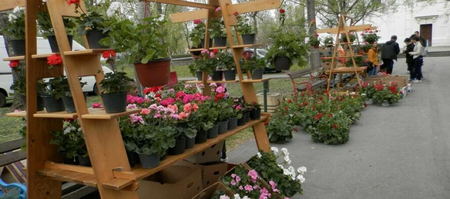 V KOVAČICI: Deň kvetov a medu