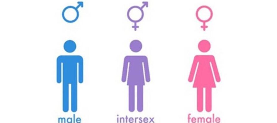 Prednáška o intersex osobách