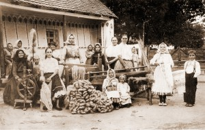 Porota Miestneho spoločenstva Gospođinci odmenila fotografiu Spracovanie konopí v Kysáči z roku 1932, ktorú zaslal M. Ďurovka