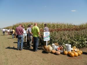 Priamo na mieste sa pestovatelia môžu poradiť s odborníkmi, ktorí im poskytujú potrebné rady